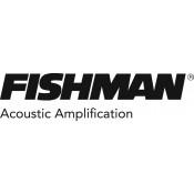 Fishman (1)