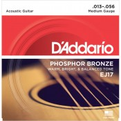D'Addario Acoustic (4)