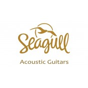 Seagull (11)