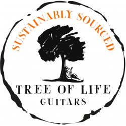 Sustainably Sourced Guitars