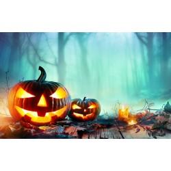 Happy Halloween Groovers!